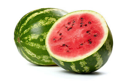 5 x 10ml E-Liquid Wassermelone Aroma 0/3/6/12mg Nikotin (35€/100ml)