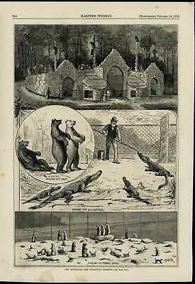 NYC Centennial Zoo Alligators Bears Prairie Dogs 1876 great old print display