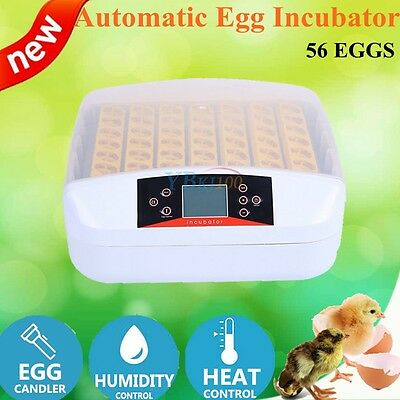 56 Egg Family Incubator Fully Automatic Turning Poultry Chicken Quail Duck Goose