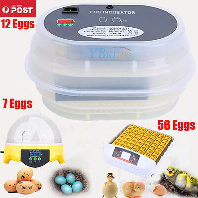 Egg Incubator Automatic Digital Turning 7/12/56 Chicken Quail Poultry Bird Tool