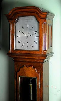 SMALL REGENCY REGULATOR LONGCASE CLOCK - Sublime item