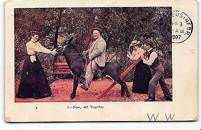 Now All Together Man Riding Mule Donkey Embossed UDB Postcard Vtg Posted 1907