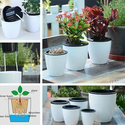 Automatic Water Absorption Flower Pot Plant Planting Round Plastic Flower Pozz