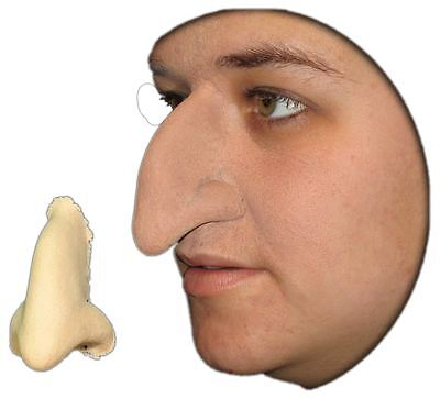Witch Nose Wicked foam latex prosthetic theater appliance