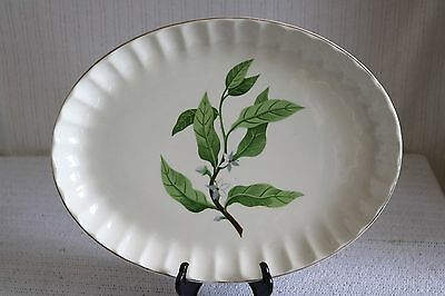 W S George Pottery GREEN VALLEY B-8760 Bolero Orange Blossom 13 1/2 Oval Platter