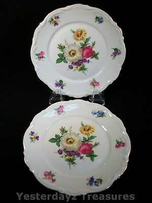 """A Pair of Very Nice 6 3/4"""" Side Plates by Mitterteich Bavaria, Meissen Floral"""