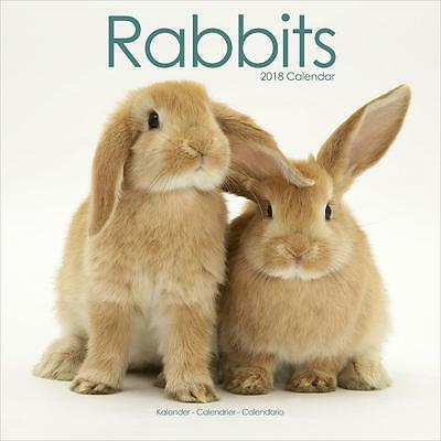 Rabbits 2018 Calendar 15% OFF MULTI ORDERS!