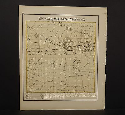 Illinois Du Page County Map Bloomingdale Township  1874 K13#73