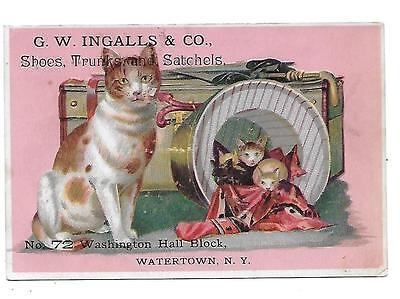 Ingalls Shoes Trunks Satchels Victorian Trade Card Watertown N. Y. Cat/kittens
