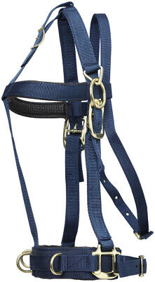 Zilco Deluxe horse Lunge cavesson Halter padded Cob/Full