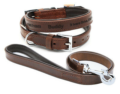 Personalised Premium Ancol Vintage Leather Padded Dog Collar and Matching Lead