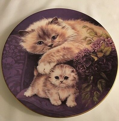 Royal Worcester Plate - Purple With A Cat And A Kitten