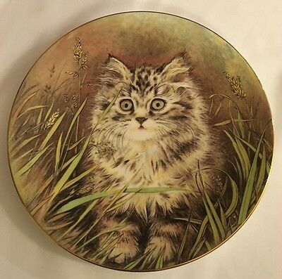 Royal Worcester Plate - Kitten Classics Collection - Wild Flower 1985