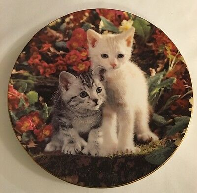 Royal Worcester Plate - Age Of Innocence Collection - Shall We Chase It? 1994