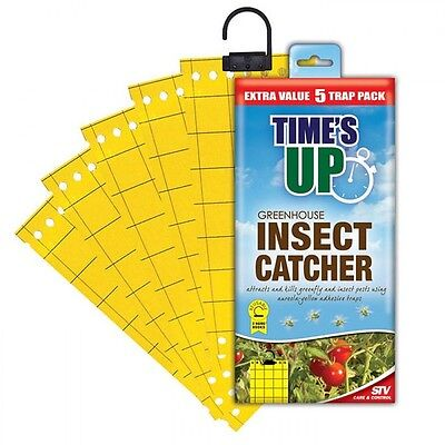 Times Up STV Greenhouse Insect Catcher Pack 5 - Sticky Greenfly & Insect Catcher