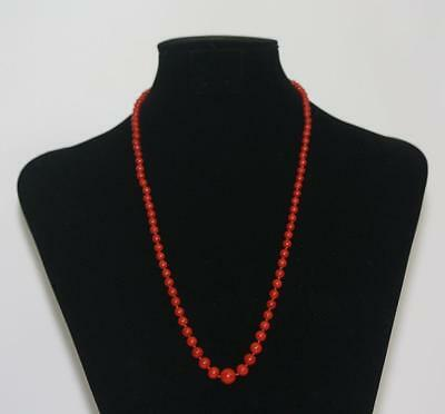 Fine Genuine Natural Red Coral Necklace