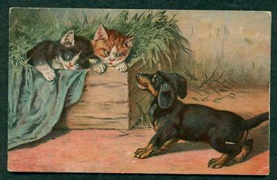 Vintage Robbins Postcard 2 Kittens And A Dog Unposted