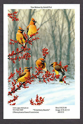 Pa Pennsylvania Game Commission WTFW 2012 Cedar Waxwing Lithograph Print Card