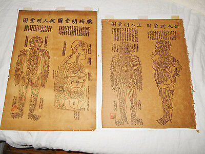 Two OLD LARGE CHINESE ACUPUNCTURE ANATOMY CHARTS woodblock print painting SIGNED