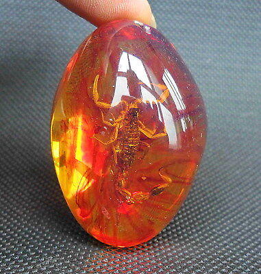 Chinese Collectable Handwork Amber Inside Inlay Scorpion Rare Auspicious Pendant