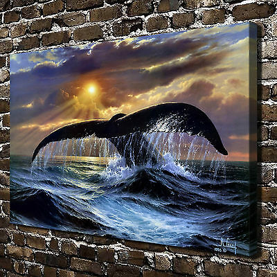 Animal Whale Paintings HD Print on Canvas Home Decor Wall Art Pictures Posters