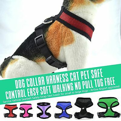 Pet Cat Puppy Dog Harness Soft Mesh Vest Walk Collar Safety Leash Strap Popular