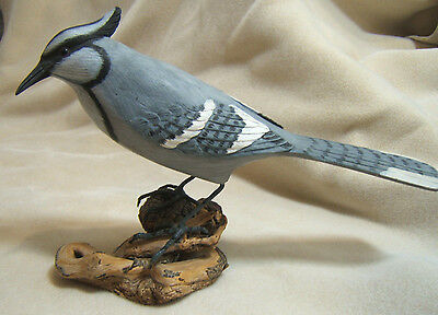 Hand Carved and Painted Blue Jay Bird Model Figure Life size Wood Perch