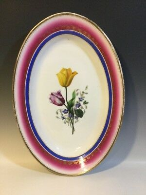 XL 19th C.Old Paris Porcelain Oval Platter Detailed HP Tulips/Royal Blue & Pink