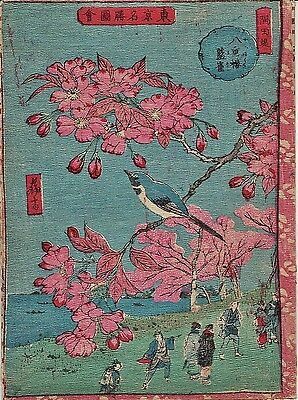 Antique Japanese Woodblock Print Waterfront Bird in Flowering Tree (V3744)