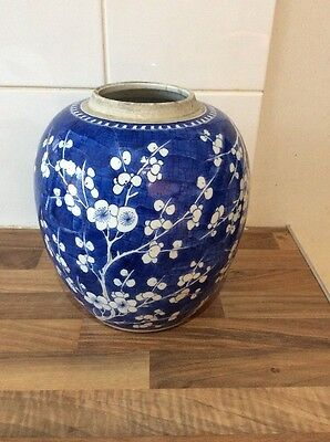 Huge Chinese Blue And White Prunus Blossom Ginger Jar