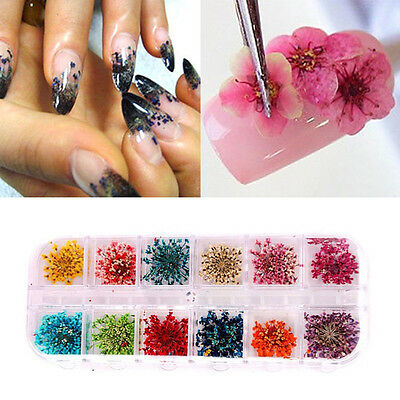 Nail Dried Flowers Set Art Decoration DIY Design Tips Manicure Sticker 12 Colors