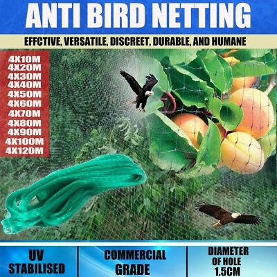 4x10M-120M Commercial Fruit Tree Plant Anti-Bird Netting Pest Net Heavy Weight