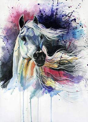 Horse watercolour painitng colourfull Canvas home wall art choose your size
