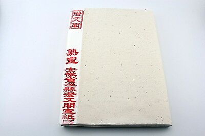 100 Sheet Ripe Rice Xuan Paper Sumi-e Chinese Brush Painting Calligraphy 14×27""