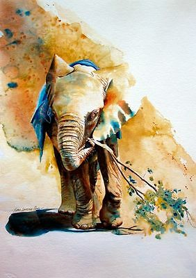 Elephant  watercolour painitng colourfull Canvas home wall art choose your size
