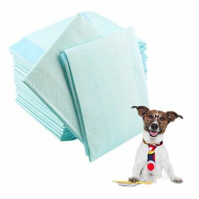 60 x 45 cm Welpentoilette Pet Einweg Doggy Hund Puppy Windel*T1