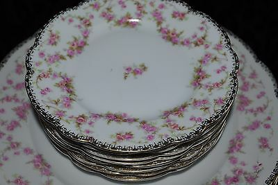 Vtg Bavaria Germany Schumann / Mz Altrohlau Cmr  8 Bridal Rose  B&b Side  Plates