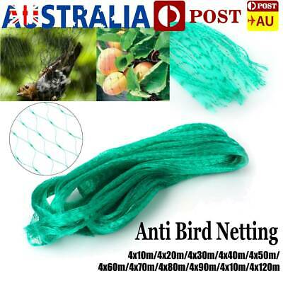 Top Quality Green Commercial Fruit Tree Plant Knitted Anti Bird Netting Pest Net