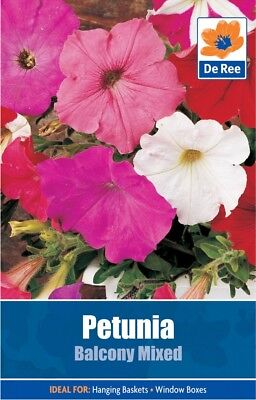 Petunia Balcony Mixed Flower Seeds (approx 750 seeds)