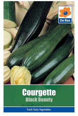 Courgette Black Beauty Vegetable Seeds (approx. 10 seeds)