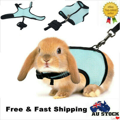 Small Animal Harness And Leash Guinea Pig Forret Hamster Rabbit Squirrel Vest