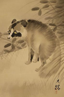 """JAPANESE HANGING SCROLL ART Painting """"Raccoon dog"""" Asian antique  #E6595"""
