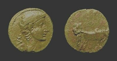 AUGUSTUS. 27 BC-AD 14. PARIUM. AE 17. Two colonists w pair of oxen. Choice!