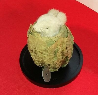 Antique Roullet et Decamps Rabbit in a Cabbage Automaton Music Box (Watch Video)