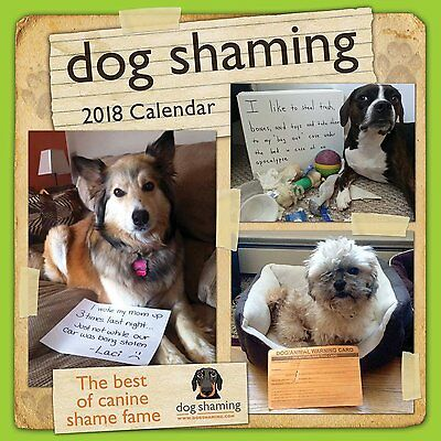 Dog Shaming - 2018 Wall Calendar - Brand New - Humor Funny Puppies 485160
