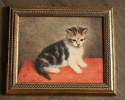 Antique Kitten oil painting on canvas in gold coloured frame