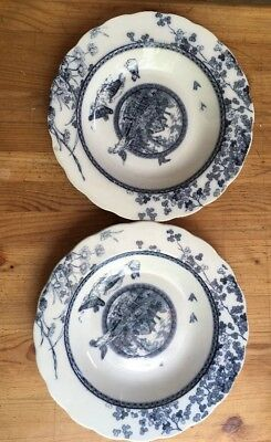 Brownfield & Sons Woodland Pattern Blue Transfer Two Soup Bowls With Birds
