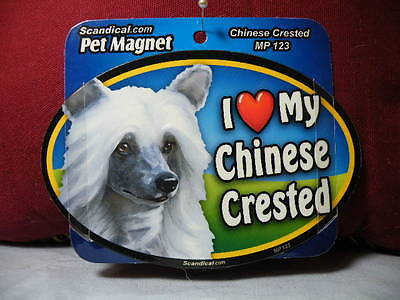 I Love My Chinese Crested Mp 123 Pet Magnet Scandical