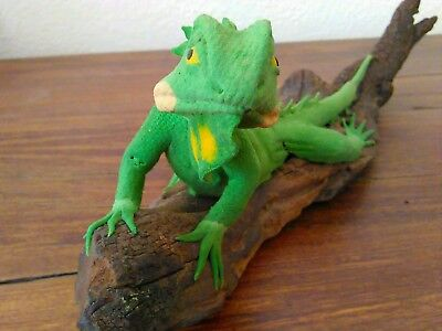 Iguana on wood branch - about 12 inches long total