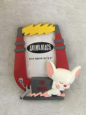 Warner Bros Animaniacs Pinky and The Brain Picutre Frame